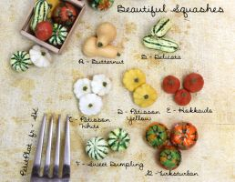 Miniature Squashes by PetitPlat