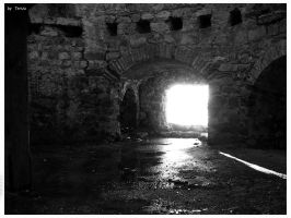 the Dungeon by Terza