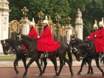 Guards at Buckingham palace by Fran48