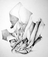 Crumpled up paper study by BlackMagdalena