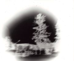 Campus Pinhole by tune4jack