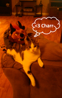 Charr Love by DragonGirl-Lucky-13