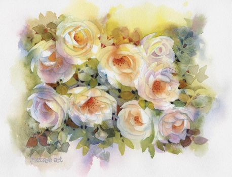White climbing rose by isletree