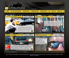 Surveillance L.A. Website by Cameron-Schuyler