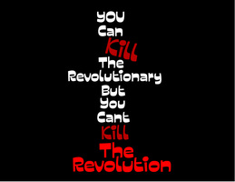 You Can Kill The Revolutionary by lyssagal