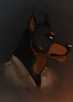Bashir by the-MadDog