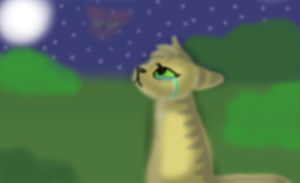 sandstorm misses firestar by brokejaycats