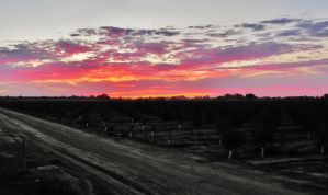 Country Backroads 1 001 by cervanphotos