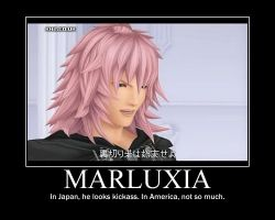 Marluxia Motivational Poster by Darkheart86