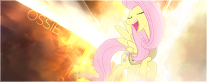 MLP - Forum signature, featuring Fluttershy by ossie7