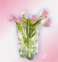More Tulips by Leanny