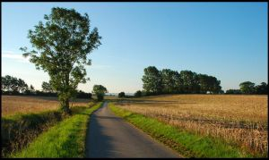 Just a summer country-road? by jchanders