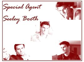 Seeley Booth by Rhicy