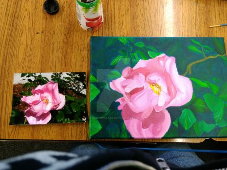 Pink Rose Painting (photo comparison) by awesomestarz