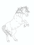 Horse rearing up - lineart by RainyApplePie