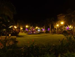 Night in Costa Rica by SquishyPandaPower