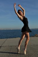 Cassie - ballerina reprised by wildplaces