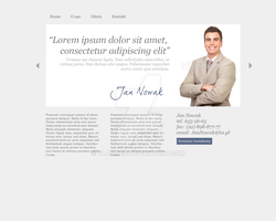 lawyer portfolio by flamner