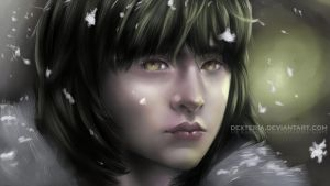 Bran Stark of Winterfell by Dexteria
