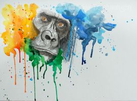 Gorilla - Hidden in color by LittleMissRaven