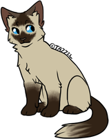 Adoptable Cat Three by Nocte-Cornu