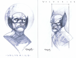 Wolverine sketch by sjsegovia