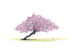 Pink Trumpet Tree by rod-roesler