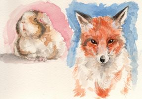 watercolour study2 by Nin-notte-in-neve