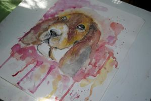 Basset Hound watercolor by bezag