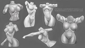Female Torso Studies - Stylized by robertmarzullo