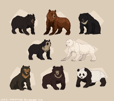 Bears of the World by Lord-StarryFace