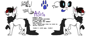 improved! Snapped!Ashie ref by ZombieDubstepSlayer