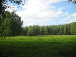 Meadow, Siberia by Garr1971