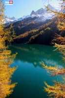 swiss trip1 by sweetyindependent86