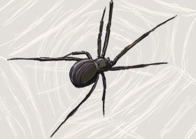 spider quickpaint by Rossross1993