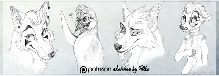 patreon sketches 1 by Ritkat