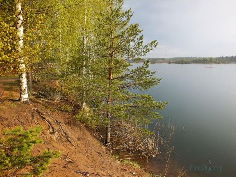 Nature of Karelia by Lairiel-elvin
