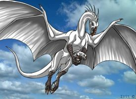 White dragon by IsisMasshiro
