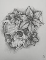 Skull and Lilies by magmallae