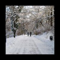 Winter Walks by Saved-from-Myself