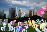 Party at Central Park by bosoxboy521