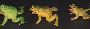 animals - objects frogs 3 b by Aimelle-Stock