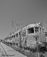 Abandonment Train by 4DK