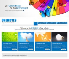 Chemdyes website mockup by projectDC
