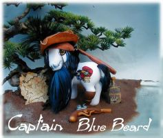 Pony pirate Bluebeard by Barkingmadd