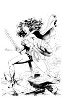 Wonder Woman Commission by aethibert