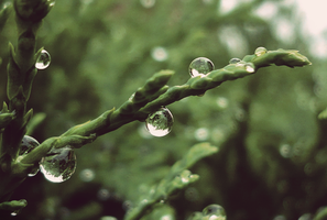 Droplets by roughhand