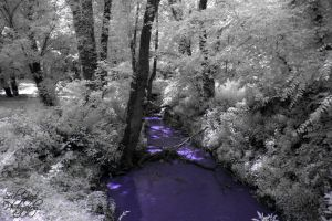 Creek Infrared 1 by GothicAmethyst
