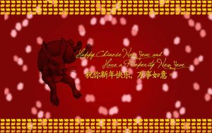 Chinese New Year 2011 by CleveWalker