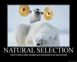 Natural selection by the-chosen-pessimist